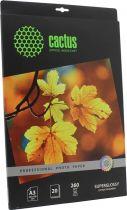 Cactus CS-HGA326020